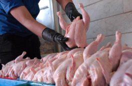 قیمت مرغ افزایش یافت