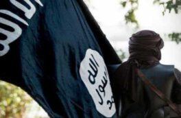 آیا هیولای داعش در حال بیدار شدن است؟