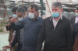 جبران خسارت سرمازدگی محصولات کشاورزی در مجلس پیگیری میشود