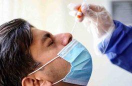 افرادی که جراحی بینی کردهاند در هنگام تست کرونا با مشکل روبرو میشوند؟