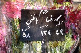 پیکر محمدرضا باطنی به خاک سپرده شد