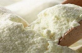 زیان ۹ هزار تومانی صادرکنندگان به ازای صادرات هر کیلو شیرخشک/افزایش قیمت شیرخام عامل کاهش صادرات شیرخشک